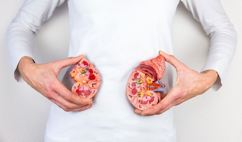 Kidney disease: It is more common than you think
